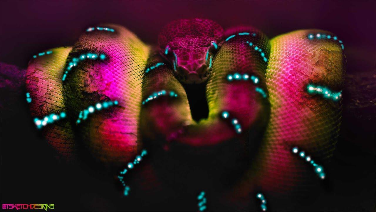 Poster design youtube - Speed Art Wallpaper Poster Design High Snake Tsketchdesigns