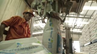 Aqua farming in Vietnam - De Heus
