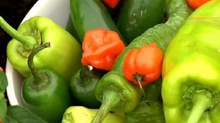 How to Grow Hot Peppers : Gardening Tips
