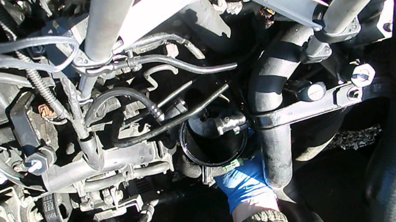 Cambio Del Filtro Gasoil En Un Motor Hdi De Citroen