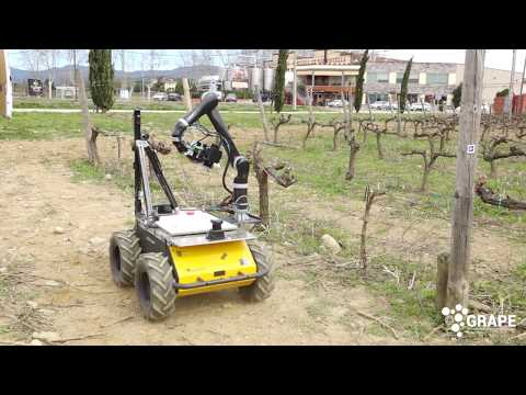 wine article Grape Robotics Applied To Vineyard Management