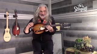 Jeff Smallwood playing the Seagull S8 EQ Mandolin.