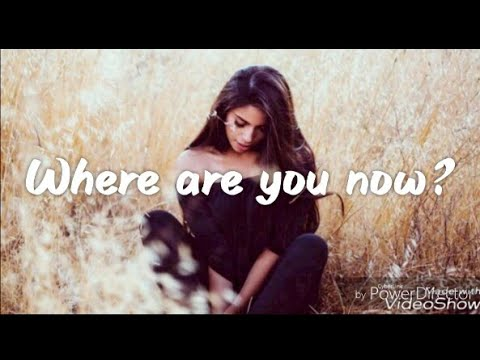 Where Are You Now - Loving Caliber feat. Lauren Dunn [Lyrics /Lyric Video]