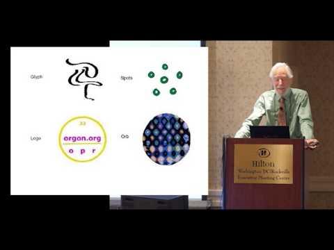 "studies-on-""life-energy""-|-roger-taylor"