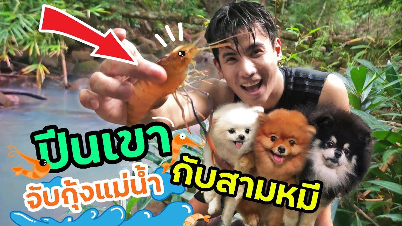 ขึ้นเขาจับกุ้งแม่น้ำ ขึ้นเขาจับกุ้งแม่น้ำ ขึ้นเขาจับกุ้งแม่น้ำ (กับ3หมี?!) l มีลูกเป็นหมา EP. 144