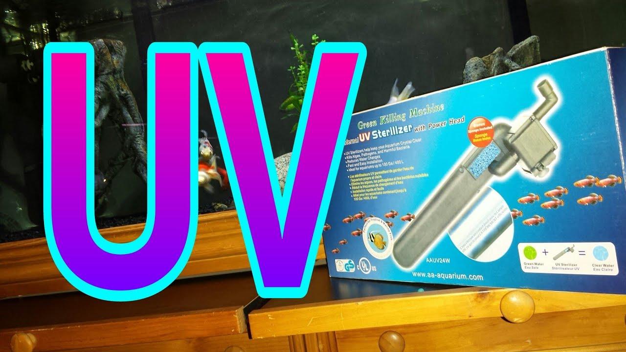 UV Sterilizer Green Killing Machine