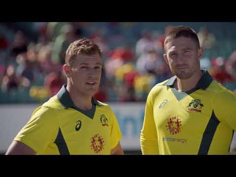 Alinta Energy Proud Partner Of Cricket Australia