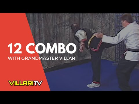 Villari's Shaolin Kempo Karate  #12 Combination