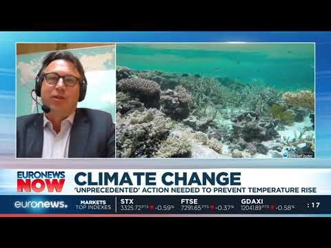 #EuronewsNow | Avoiding global climate chaos will require 'unprecedented' action
