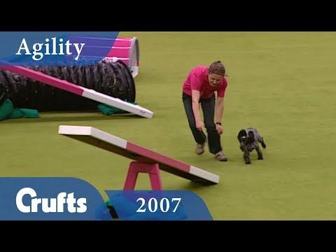 Eukanuba Mini Agility Challenge from Crufts 2007 | Crufts Classics