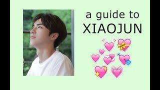 """a """"kinda"""" helpful guide to WayV's XIAOJUN"""