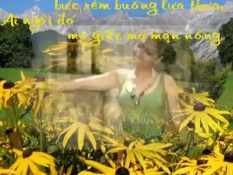 Tiec thuong lyrics