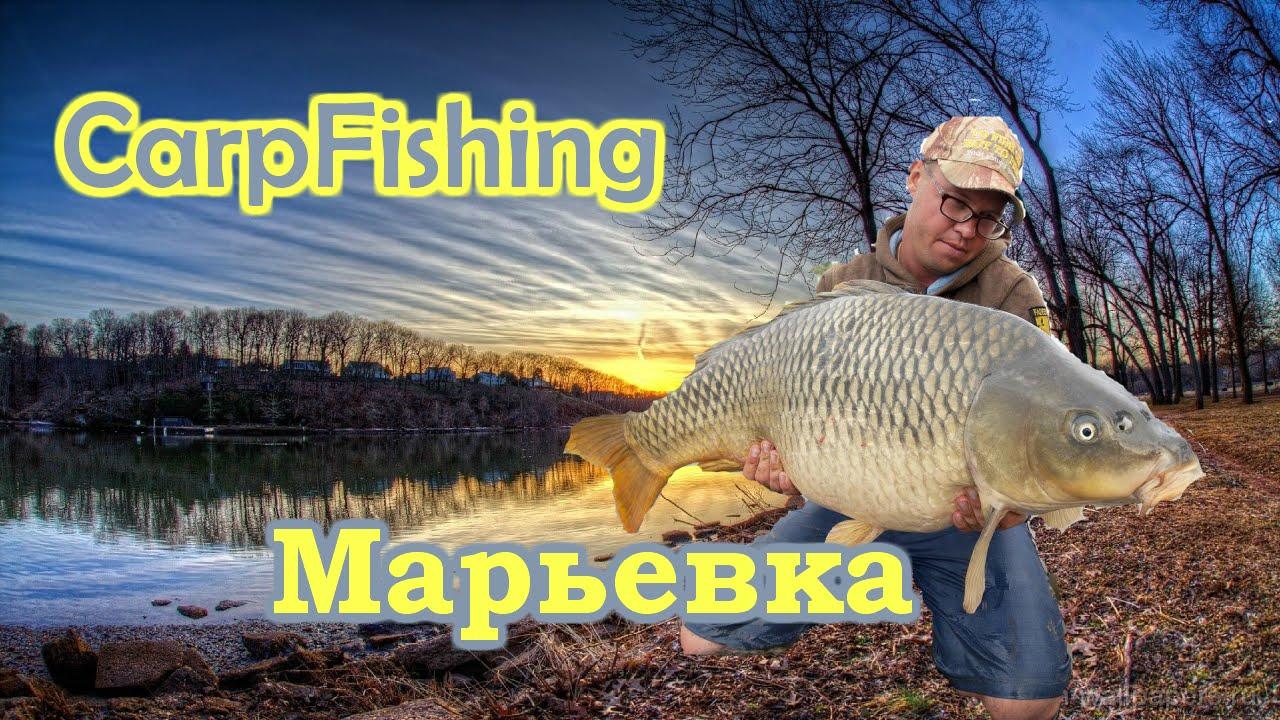 рыбалка ловля карпа видео на ютубе