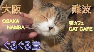 ぐるぐる堂HP → http://www.nekocafegurugurudou.com/ リアル系別チャン...
