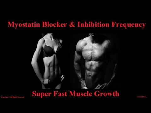 Extreme Body Building Frequency - Myostatin Inhibitor & Blocker Muscle Growth Binaural Beats