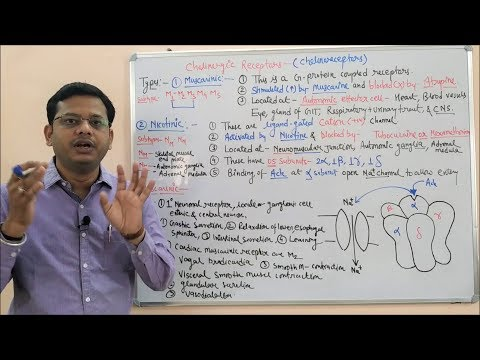Cholinergic Drugs (Part 02) = Muscarinic And Nicotinic Receptors (HINDI) By Solution Pharmacy