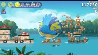 Angry Birds Rio Blossom river All levels