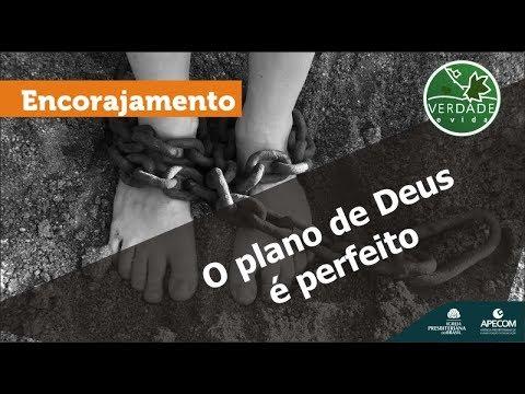 0645 - O plano de Deus é perfeito