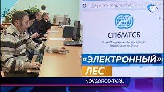 Новгородских лесозаготовителей обучают на специальных биржевых площадках
