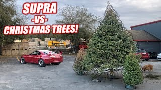 We Used a Supra's Launch Control to BURN Our Old Christmas Trees! (feat. Fire Department)