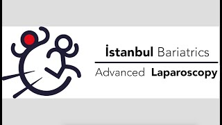 Istanbul Bariatrics as a Center of Excellence