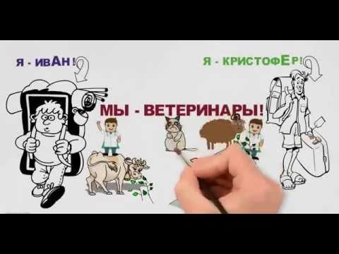как заработать в интернете ?  WEBTRANSFER рисованный рекламный ролик автор Татьяна Соловьёва Юдина