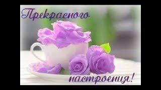 Красивое пожелание  хорошего настроения !
