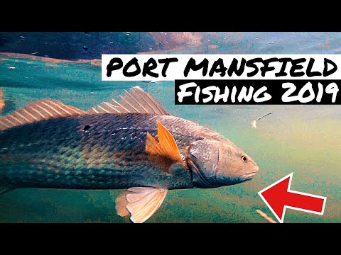Port Mansfield LIGHT TACKLE Inshore FISHING 2019