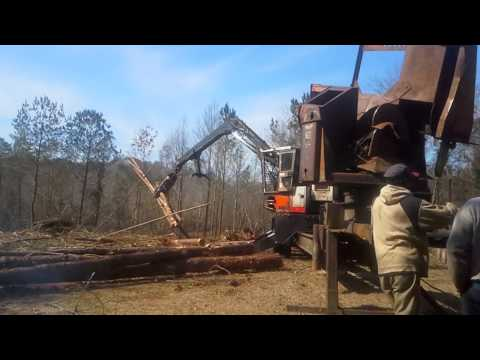 Panola Alabama Logging