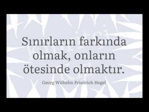 Georg Wilhelm Friedrich Hegel ve Kibritçi Kız