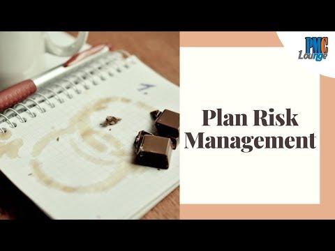 plan-risk-management-process