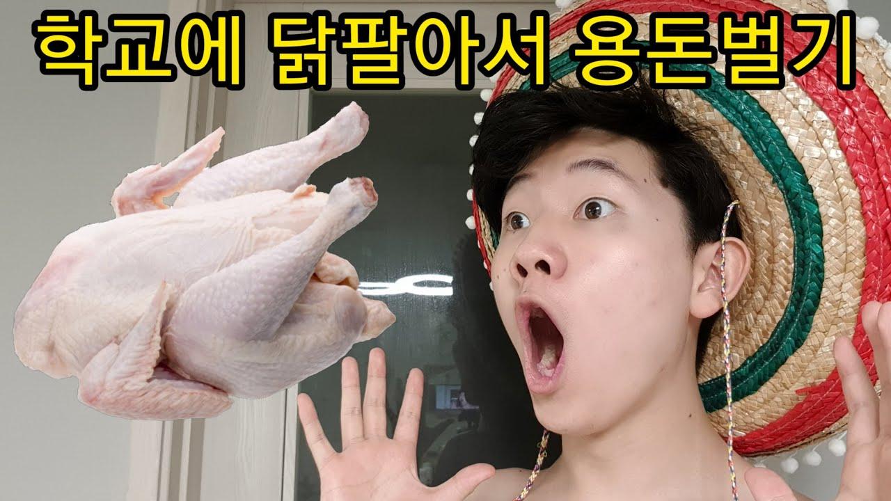 학교에서 닭팔아서 돈버는법 헌터퐝님 학교버전????