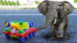 Police Car Toys Rescue Crazy Tank From Elephant | Car Toys TV