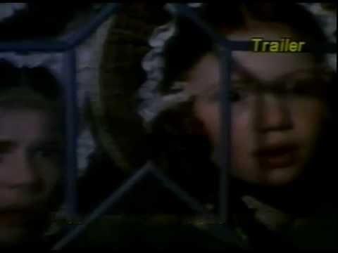 Trailer do filme A Senhora dos Lobos