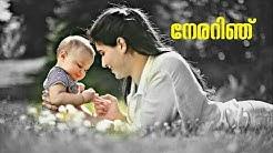 Thaaram malayalam lyrical status movie[shikkari shambu]