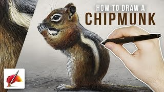 How to Draw a CHIPMUNK - Draw This #74
