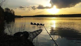 Удачное открытие Фидерного сезона ловля по холодной воде на Белоярском Водохранилище