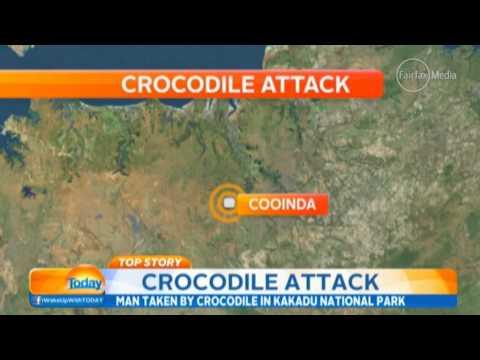 Search for man in crocodile attack