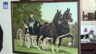 Paardenschilder Jans Slot