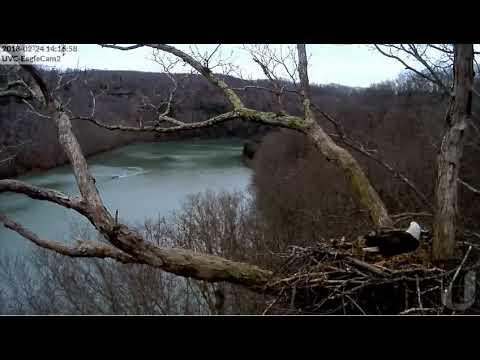 DHEC, Boat Hits Submerged Tree, 022418