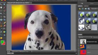 how to change a background in photoshop elements