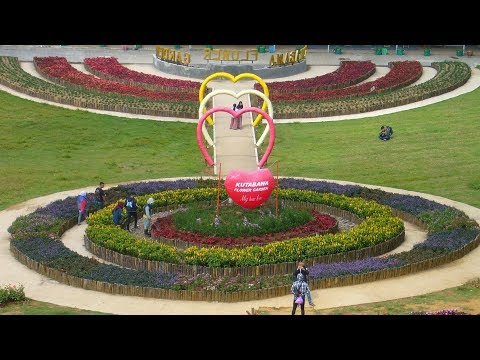 Keren ... Wisata Kebun Bunga Kutabawa Flower Garden Purbalingga