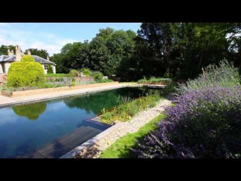 Natural Swimming Pools Benefit Your Backyard