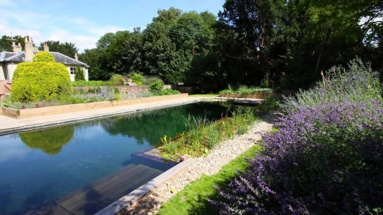Natural Swimming Pools Benefit Your Backyard Youtube