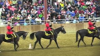 Royal Canadian Mounted Police Musical Ride Topsfield Fair 2012