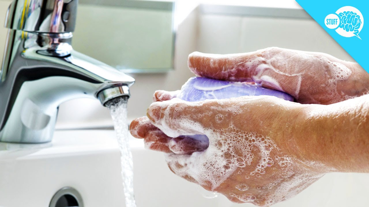 Why you should wash your hands after using the bathroom - Why You Should Wash Your Hands After Using The Bathroom
