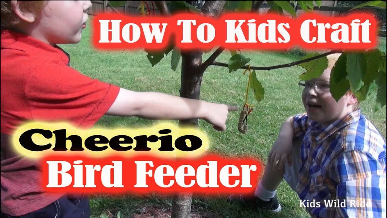 How To Make A Bird Feeder With CHEERIOS: DIY Kids Activity   Craft For  Children