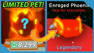 Buying Limited Enraged Phoenix Pet In Roblox Bubble Gum Simulator *8299 Robux*