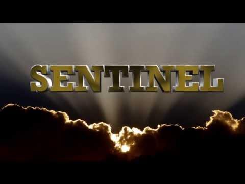 Sentinel Sound 100% Dubplate Mix
