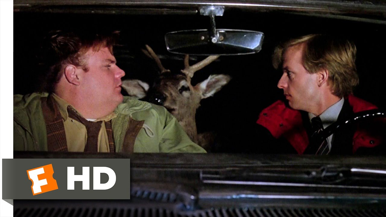 Tommy Boy 410 Movie Clip The Deer Wakes Up 1995 Hd Youtube